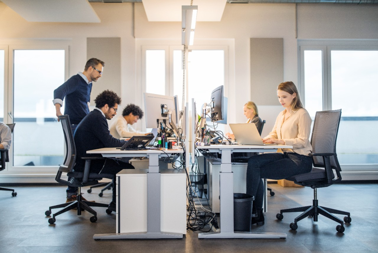 People working on laptop at their desk with manager supervising the work. Business people working in a small office for digital connected services