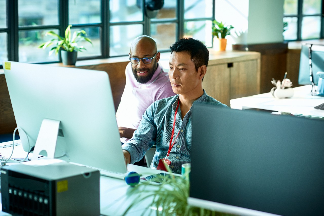 Two office employees looking at desktop screen at work